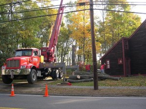 Removing the Norway Maple in 2009